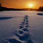 Vós sois sal da terra e luz do mundo (Mt 5,13-16)